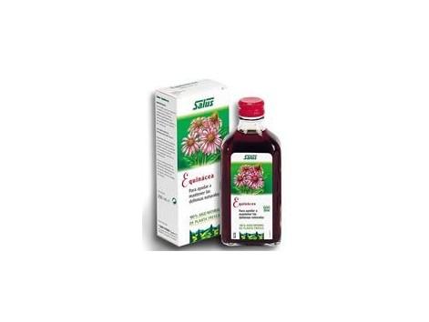 Echinacea Juice Schoenenberger 200ml. Salus.