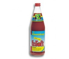 FasToFit Tomato Juice 750ml. Salus.
