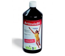 Vitasil Articulasil Solución Bebible 1000 ml.