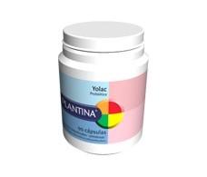 Plantina Yolac ( probiotico) 45 capsulas.