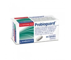 Lamberts Probioguard (probiotic supplement) 60 capsules.