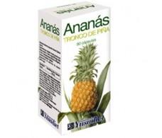 Ynsadiet Ananas (digestive, diuretic, intestinal transit) 90 cap