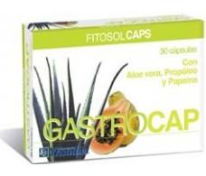Fitosol Ynsadiet Gastrocap (Gastrointestinal) 30 capsules.