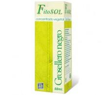 Ynsadiet Concentrado Vegetal Grosellero Negro (diuretico, antiin