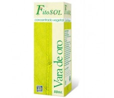Concentrate Plant Ynsadiet Goldenrod (diuretic) 50ml.