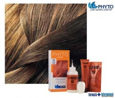 Phyto Color 6AC Coppery Mahogany Dark Blonde tint.