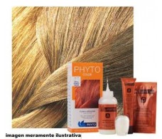 Phyto color 9 Dye-blond.