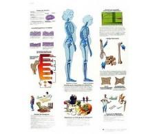 Print 3B Rehab Osteoporosis