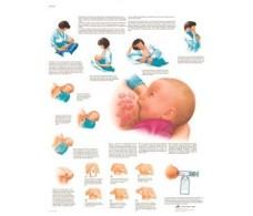 Print 3B Rehab Breastfeeding