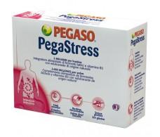 Pegaso PegaStress 18 envelopes