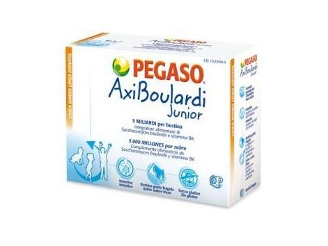 Pegaso Junior AxiBoulardi 14 envelopes