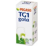 Pegaso TG1 gola spray 30ml