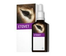 Concentration Etovet EneryVet 30ml