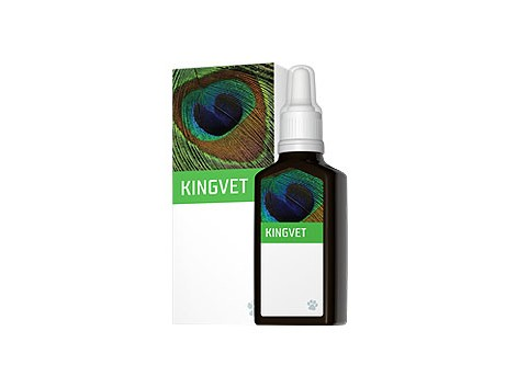 EneryVet Kingvet Movimento 30ml