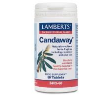 Lamberts Candaway 60 caps.