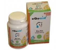 EQUAID PLUS PROBIOTIC mare's milk 60cap.