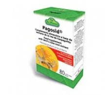 Joints Pagosid 80 tablets. Dr Dunner.