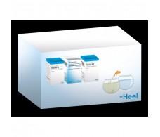 HEEL THERAPY DETOX (heppel, lympho., Reneel) pack (50 tablets x3)