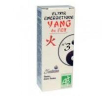 5 SAISONS Elixir No. 3 yang heart (angelic) (tonic, stimulant) 50 ml