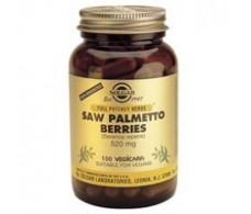 Solgar Sabal - Saw Palmetto Berry. 60 capsules