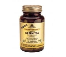 Solgar Green Tea Chinese High Power. 50 capsules