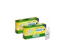 A. Fisiosol 20 blisters of 2ml. Specchiasol