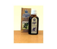 Elixir No 10 kidney yin (grosellero black) (relaxes and removes)