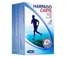 Orthonat Harpagocartil 90 capsules. Orthonat