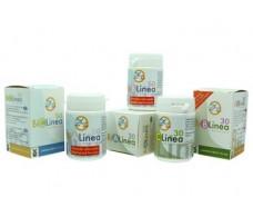 Tegor Bilinea B 40 capsules