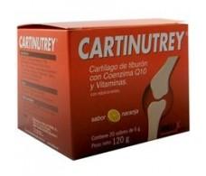 Cartinutrey. 20 sachets orange flavor