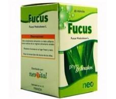 Fucus microgranules Neo 45 capsules