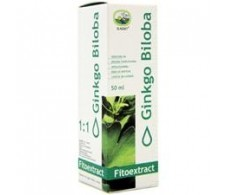 Eladiet Fitoextract Concentrate Ginkgo Biloba 50 ml.