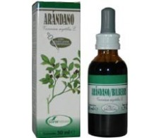 Soria Natural Bilberry Extract (eye movement) 50 ml.