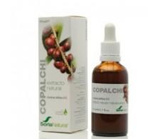 Soria Natural Extract Copalchi (hypoglycemic, febrifuge) 50ml.