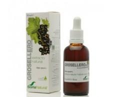 Soria Natural Black Currant Extract 50 ml.