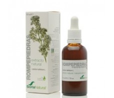 Soria Natural Extract Stonebreaker 50 ml.