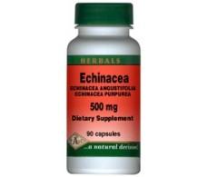 Pal Echinacea 500mg. 100 tablets.